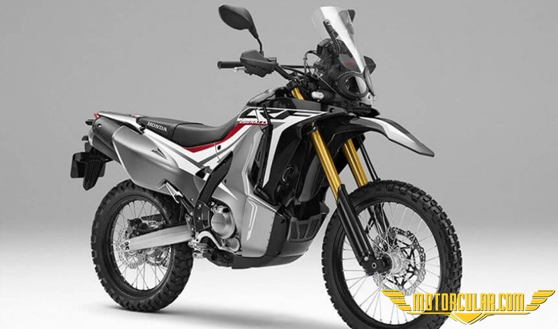 Honda CRF Rally 2020