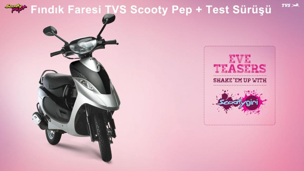 Fındık Faresi TVS Scooty Pep +