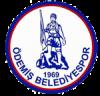 ÖDEMİŞ BELEDİYE SPOR KULÜBÜ - ÖBSK Logo