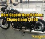 Hem Sepetli Hem Bobber: Chang Jiang CJ650