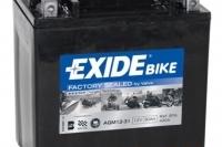 Exide AGM12-31