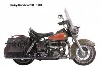 HD FLH - 1981