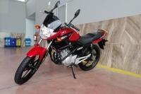 Yamaha - YBR 125 ESD
